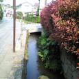 小野神社脇の用水路